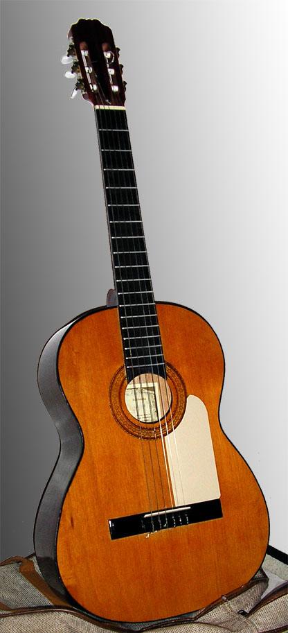 pažintys kalamazoo gitaros kas yra britt dėl bendros ligoninės pažintys realiame gyvenime